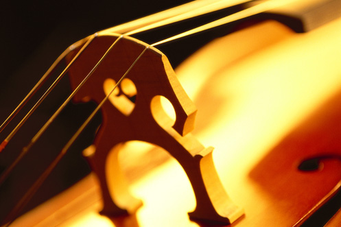 toned close-up of strings of a cello