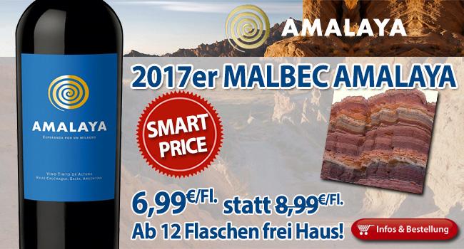 Echte Wuchtbrumme: 2017er Malbec - Amalaya nur 6,99€ statt 8,99€