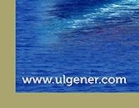 Ulgener Web Site