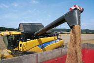 Agrarmärkte-Seminar: Wohin steuern die Weizen- und Rapspreise?
