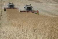 Biokraftstoffe: Dringender Appell an EU-Politiker
