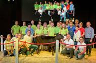 Wagyu-Rind für 41.000 € verkauft