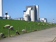 Branche ist unzufrieden mit Ausgang der Klimakonferenz