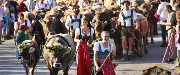Viehschied in Oberstaufen